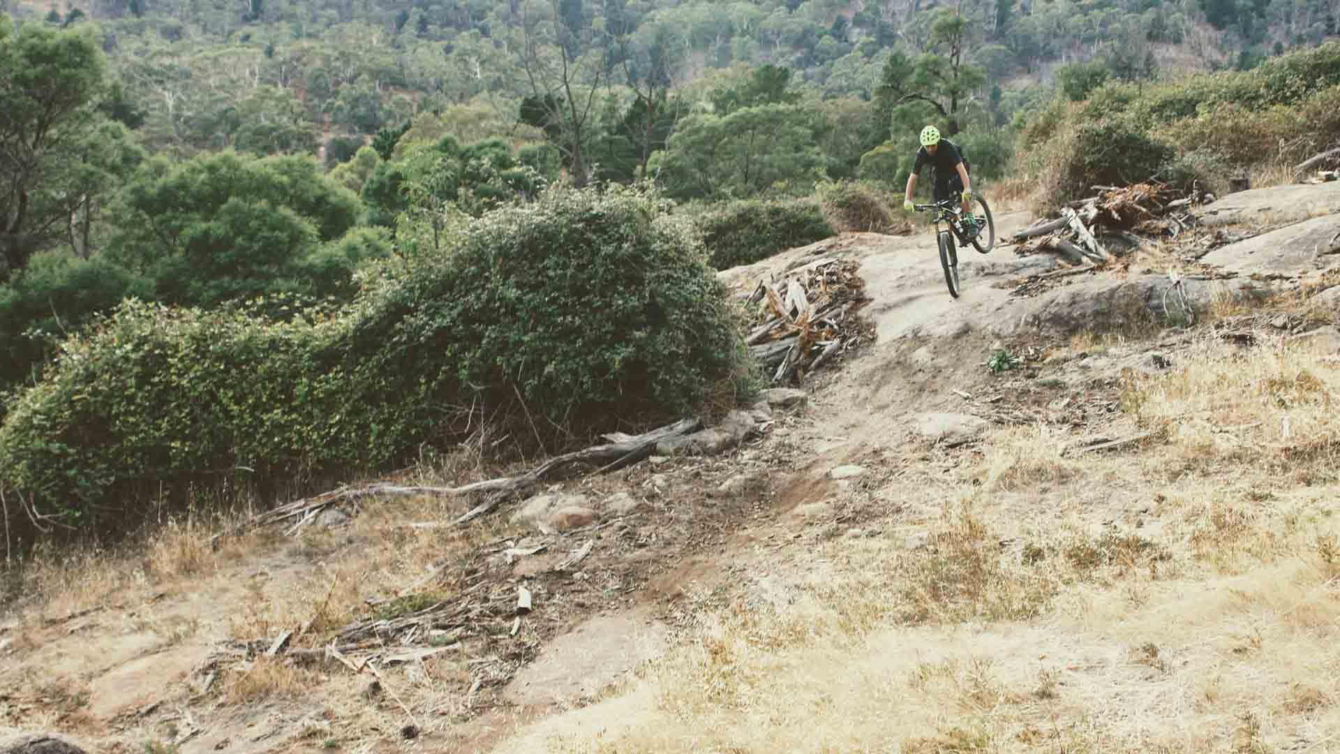 Barramul rear up