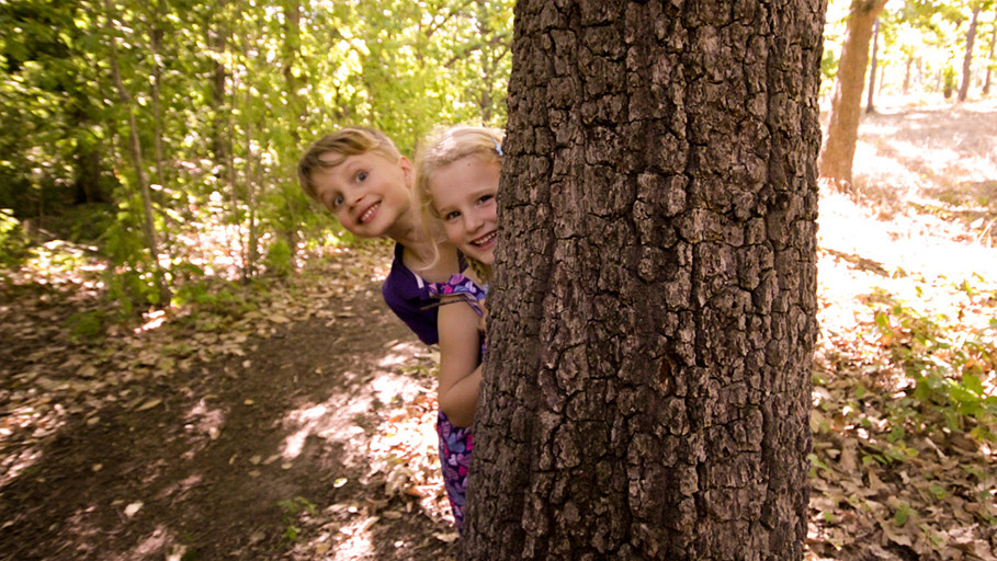 Peek-a-boo by Meg West, The Oak Forest is Famed for Photogenic Appeal.